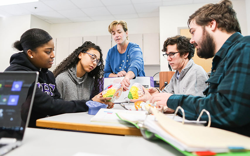 Curry College Psychology students and faculty collaborate on an interactive class assignment
