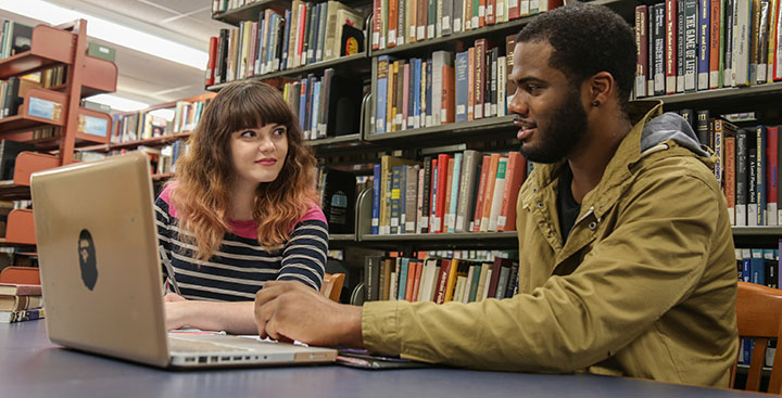 Students collaborate in the Levin Library at Curry College