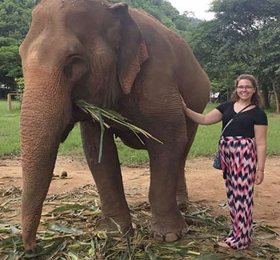 A Curry College Study Abroad student pets an elephant in Thailand