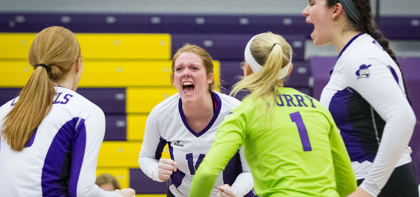 Curry College Women's Volleyball players celebrate a point