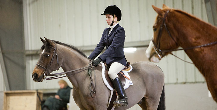 A Curry College Equestrain rider on a horse during competition